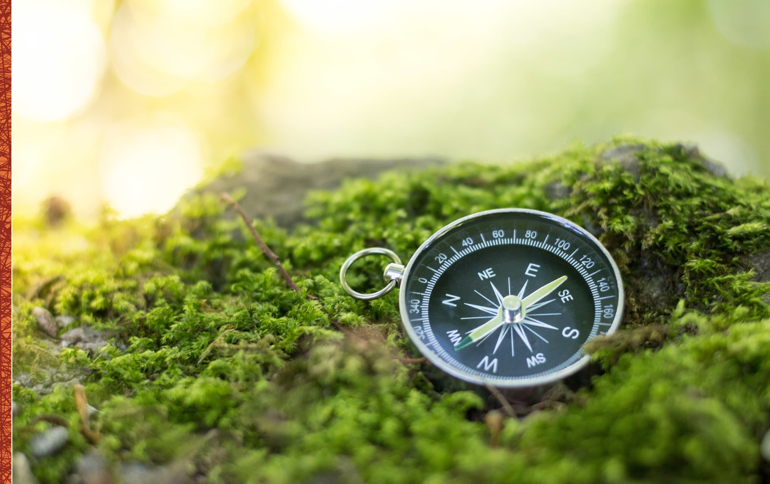 Leiderschapsontwikkeling-Persoonlijk leiderschap-Persoonlijke effectiviteit-Beïnvloeden-header-1